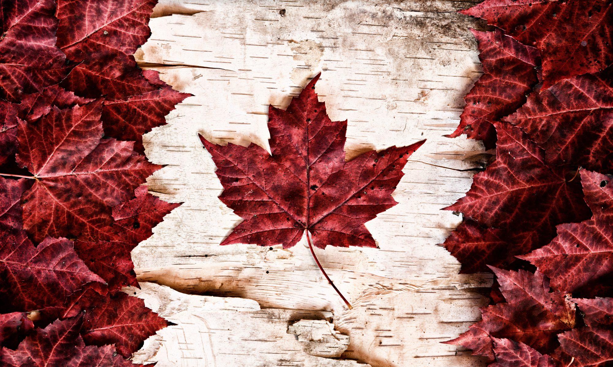 Canadian Employee Assistance Program Association
